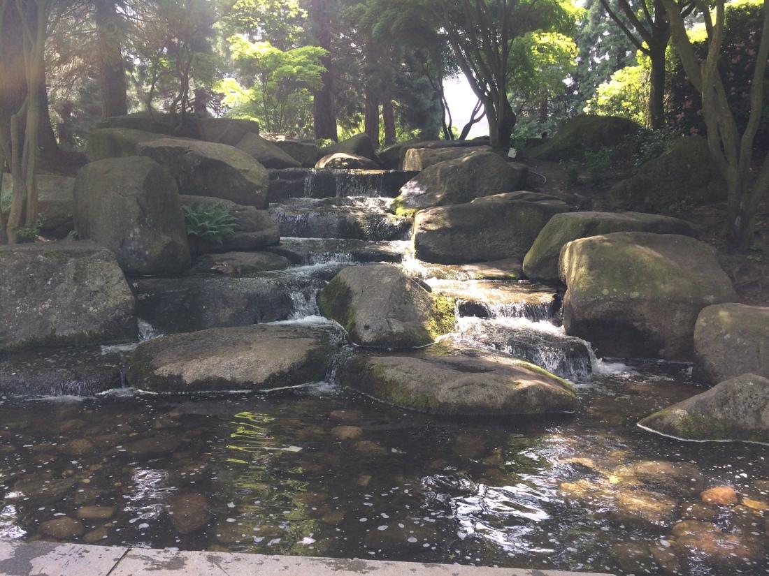 Besuch Des Wunderschönen Botanischen Garten In Hamburg My Trips